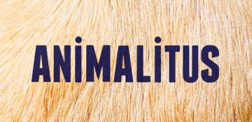 Animalitus